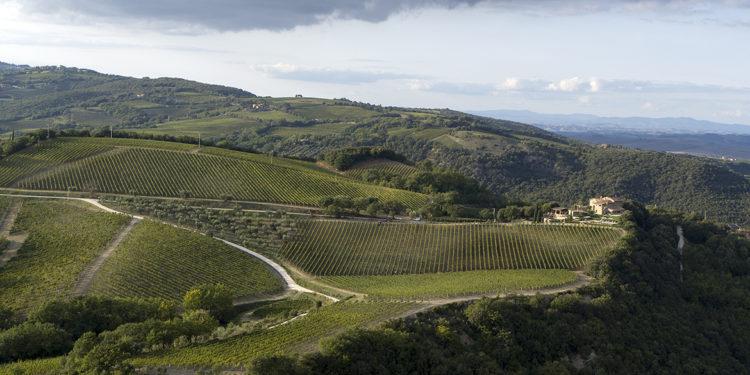 Il Top delle guide vini 2021: i migliori Brunello