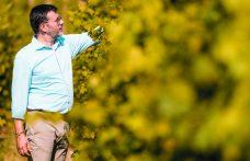 Maestri dell'eccellenza: Masi Agricola è l'anima green della Valpolicella