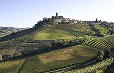 Il Top delle guide vini 2021: i migliori Barolo