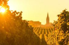 Bordeaux 2020, le prime impressioni en primeur