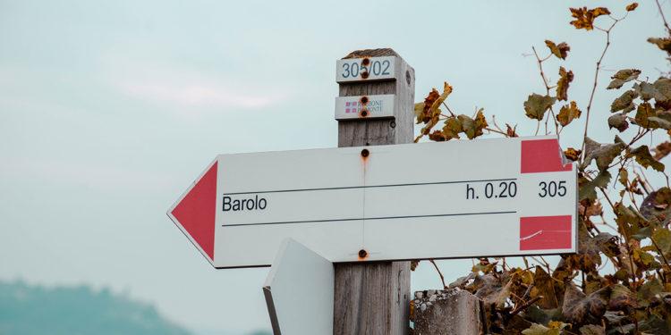 Il Top delle guide vini 2021: le denominazioni più premiate