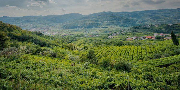 Per i Monti Lessini il futuro è Biodiversity Friend