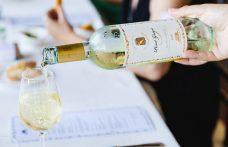 In mostra i 60 anni del Pinot grigio Santa Margherita