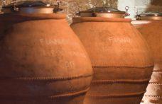Gli interpreti del vino naturale in Campania
