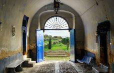 Focus Regaleali: la tenuta storica dei Tasca d'Almerita