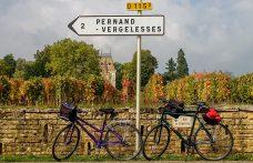 Vendemmia e climate changing: i francesi si preparano. L'ultimo studio in Borgogna