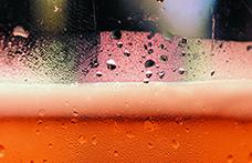 Acqua nella birra: è la fonte di  successo o rovina