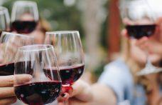Vini rossi per l'estate: 5 novità (+ 1 rosato) da provare