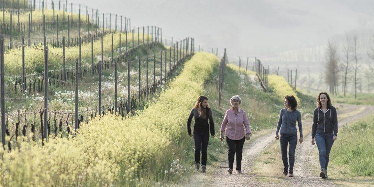 """Il progetto di """"rigenerazione vitale"""" di Cascina Vèngore"""
