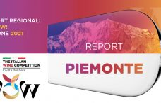 Report WOW! 2021 Piemonte