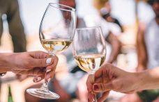 L'agenda del wine lover: gli appuntamenti di settembre