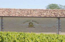 Bordeaux: Château Angélus e Trotte Vieille a processo per la classificazione Saint-Émilion