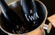 IWA 5, il sake di Richard Geoffroy al debutto in Italia