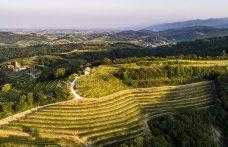 Nuove acquisizioni, dal Friuli alla Puglia, passando per Toscana e Marche