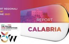 Report WOW! 2021 Calabria