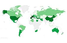 La superficie mondiale del vigneto biologico guadagna terreno
